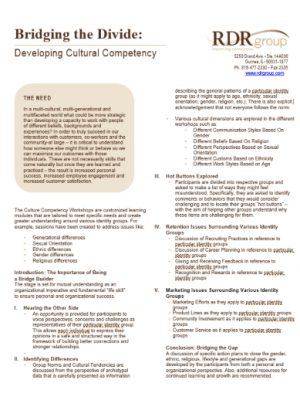 developing culture competency 400x518
